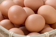 卵油の効果